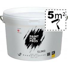 Магнитная штукатурка Paintforpros, 12,5 кг.