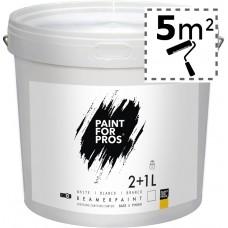 Краска для экрана проектора Paintforpros BeamerPaint